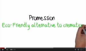 promessa_film